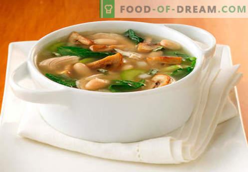 Juha z gobjo - najboljši recepti. Kako pravilno in okusno kuhamo juho v gobovi juhi.