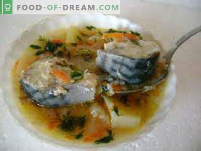 Sveže zamrznjena juha iz skuše, recepti s fotografijami. Kako kuhati juho skuše