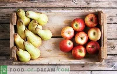 Kompot jabolk in hrušk za zimo: sestavine okusa. Najljubši kompot jabolk in hrušk za zimo v receptih brez zapletenosti