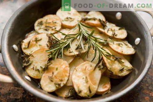 Rožmarin - opis, lastnosti, uporaba pri kuhanju. Recepti z rožmarinom.