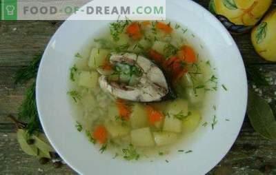 Ribja juha iz krapov - dišeča in zdrava prva vrsta. Recepti krapova juha: klasična, z rumenjakom, proso, ječmenom, itd.