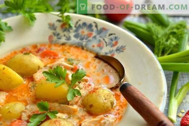 Piščančja juha z novim krompirjem in zeleno čebulo