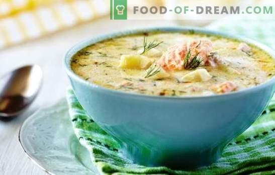 Ribja juha v počasnem štedilniku - nikjer lažje! Recepti za različne ribje juhe v počasnem štedilniku s konzervirano hrano, žitaricami, zelenjavo