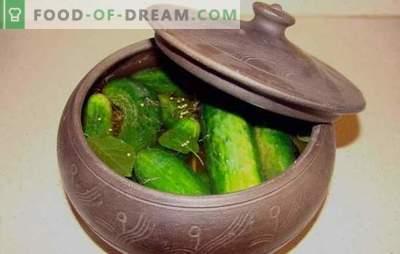 Gospodarji raje dajejo soljene kumare v ponvi! Recepti soljene kumare v ponvi in jedi z njihovo udeležbo