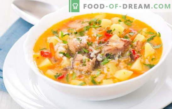 Fischsuppe mit Reis ist ein leichter, schmackhafter erster Gang zum Mittagessen. Die besten Rezepte zum Kochen von Fischsuppe mit Reis