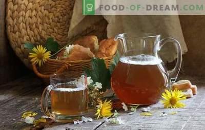 Hitri kvas s citronsko kislino - potešite žejo! Recepti enostavnega, cenovno ugodnega in hitrega kvasa s citronsko kislino