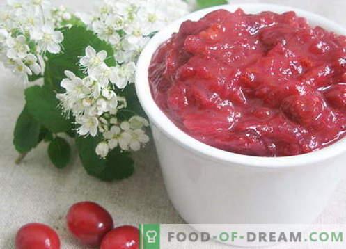 Brusnična omaka - najboljši recepti. Kako pravilno in okusno kuhati brusnično omako.