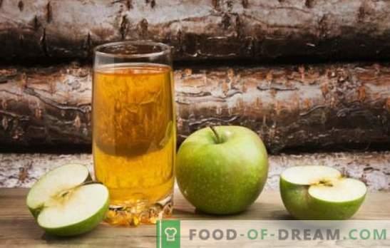 Kapsule jabolk - razpoložljivost receptov, enostavnost tehnologije. Osveževanje in zdravljenje jabolčnega kvasa na dan in še hitreje