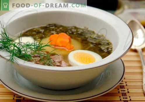 Sorrel juha - dokazani recepti. Kako pravilno in okusno kuhati kislo juho.