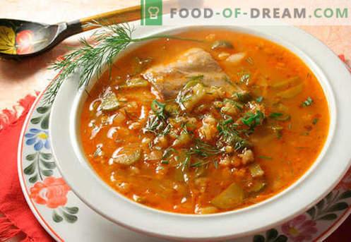Rassolnik z rižem - najboljši recepti. Kako pravilno in okusno kuhati škripci z rižem.