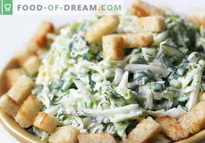 Solata z zelje in krekerji - izbor najboljših receptov. Kuhanje okusnih solat s kupusom.