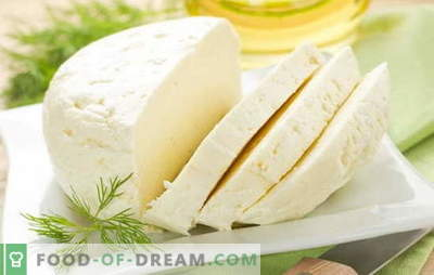 As melhores receitas para leite de vaca caseiro a partir de leite de vaca. Queijo de leite de vaca: regras básicas para o fabrico de queijo caseiro