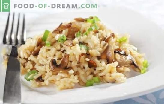 Rižoto v počasnem štedilniku - jed iz Italije. Rižotni recepti v multikvalnici z gobami, piščancem, zelenjavo, slanino
