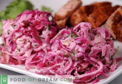 Rdeča zelje - najboljši recepti. Kako pravilno in okusno pripraviti solato iz rdečega zelja.