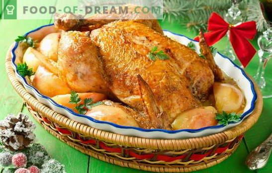 Kip met appels in de oven - dit is geen grapje! Recepten gearomatiseerde kip met appels in de oven: geheel en plakjes