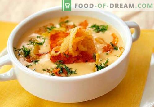 Juha iz sira - najboljši recepti. Kako pravilno in okusno kuhati juho iz sira.