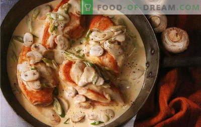 Najboljši recepti za piščančji file v smetanovi omaki. Kako pripraviti piščančji file v kremni omaki v ponvi in v pečici