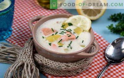 Kuhanje okusne finske juhe: recepti. Finske juhe iz svežih, ocvrtih, prekajenih in konzerviranih rdečih rib