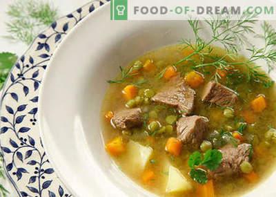 Juhe z mesom - najboljši recepti. Kako pravilno in okusno kuhati juhe z mesom.