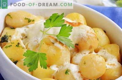 Krompir v kisli smetani - najboljši recepti. Kako pravilno in okusno kuhati krompir v kislo smetano.