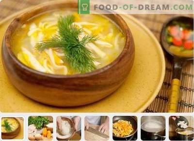 Piščančja juha - najboljši recepti. Kako kuhati piščančjo juho.