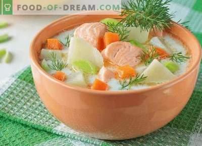Lososova juha - najboljši recepti. Kako pravilno in okusno kuhati losos juho.