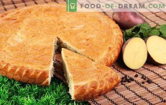 Pouring Potato Pie - Ne bo drobtin! Preprosti recepti za želatine na majonezi, kisli smetani, kefirju in rjaženki