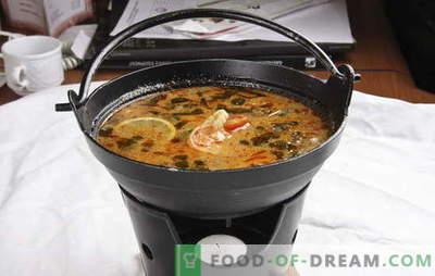 Tajska juha - eksotična v vaši kuhinji. Recepti tajske juhe z govedino, ribami, piščancem, morskimi sadeži, zelenjavo in gobami