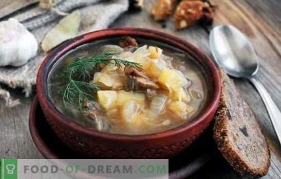 Posna juha z gobami - starodavni recepti v sodobni ruski kuhinji. Enostavna, krepka in vitka juha z gobami, kisljo, koprive