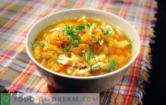 Juha s kislim zeljem: recept za prve bogate. Recepti za juho iz zelja iz kislega zelja v svinjski in goveji juhi
