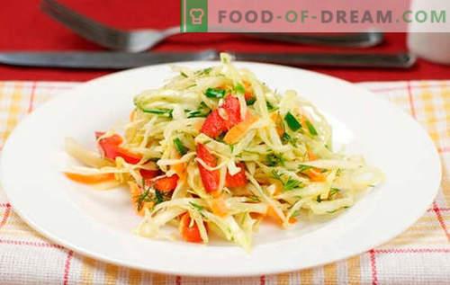 Salata z zelje s papriko - najboljši recepti. Kuhanje solate z zelje in sladko papriko.