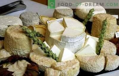 Kako izdelati kozji sir doma: ideje za mala podjetja, ob upoštevanju sankcij. Domači kozji sir - boljši!