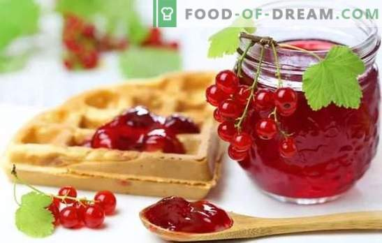 Red currant jelly is a bright and healthy dessert. The best recipes of red currant jelly with cottage cheese, cream, milk, wine