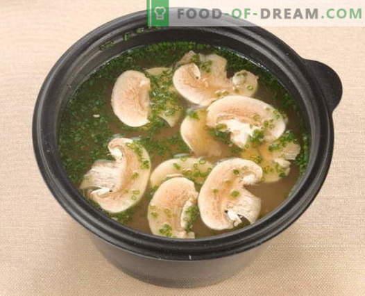 gobova juha - najboljši recepti. Kako pravilno in okusno kuhati gobova juha.