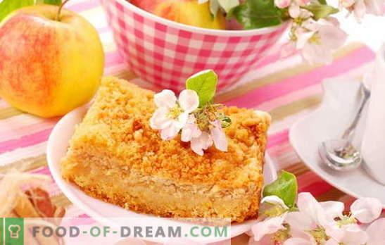 Curd apple pie - presenetljivo enostavno! Recepti neverjetnih skutnih pite z jabolki; mehko in sočno
