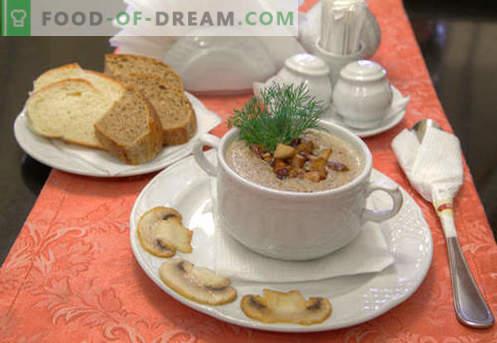 Zuppa di purea di champignon - ricette collaudate. Come cucinare correttamente e deliziosamente una zuppa di champignon.