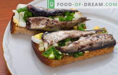Sprat from herring at home: tasty savings! Recipes for homemade sprat from herring: with tea, onion peel, liquid smoke