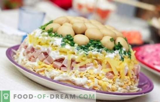 Slojevita solata s šunko - predjed za vse priložnosti. Recepti za napihnjeno solato s šunko, krompirjem, suhimi slivami, čipsom
