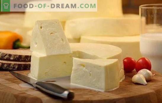 Kako hitro kuhati suluguni doma: recept za mlade bele sire. Kuhanje nežnega sulugunskega sira doma