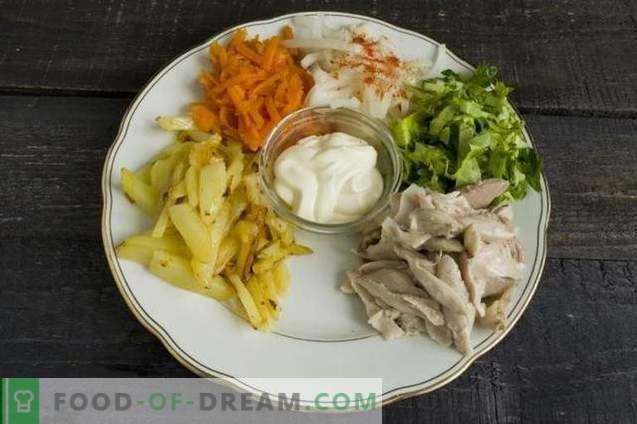 Rastlinska solata z mesom