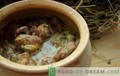 Stomaci di pollo in panna acida - per gli amanti delle frattaglie! Ricette per stomaci di pollo con panna acida in forno, nel fornello lento, nelle pentole