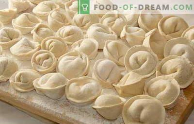 Dumpling testo - najboljši recepti. Kako kuhati testo za raviole.