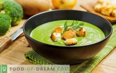 Brokoli kremna juha - za zdravje, um in lepo sliko. Recepti za kremne juhe s kremo, sirom, piščancem, gobami