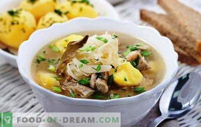 Juha v juhu s počasnim štedilnikom, kot iz ruske peči. Najboljši recepti in značilnosti kuhanja juhe v multicookerju