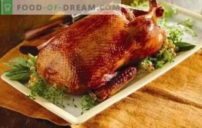 Domača raca v pečici: postopni recepti rdeče, sočne in dišeče ptice. Kuhanje domačega račka v pečici s recepti po korakih