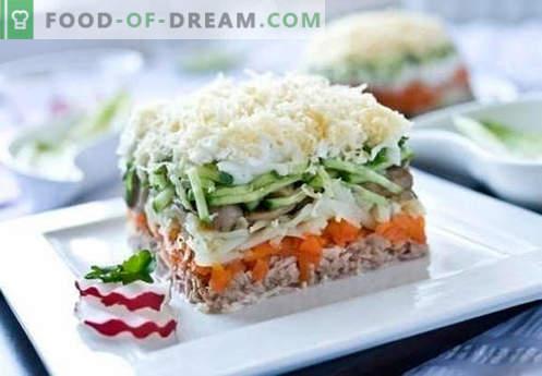 Solata iz konzerviranega roza lososa - izbor najboljših receptov. Kako pravilno in okusno kuhana solata iz konzerviranega roza lososa.