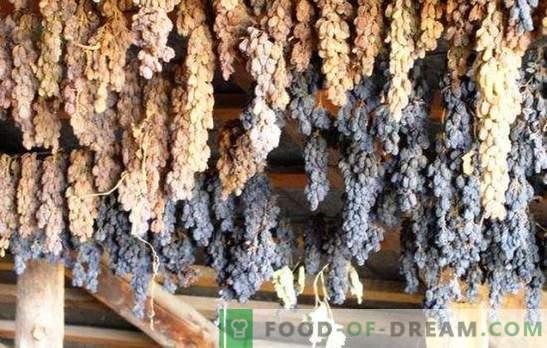 Kako narediti rozine iz grozdja doma - prihranite žetev! Vse načine in nasvete, kako narediti dobre rozine iz grozdja doma