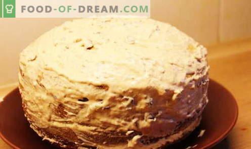 Honey torta - najboljši recepti. Kako pravilno in slastno kuhati medeno torto.