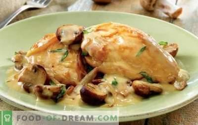 Nežen piščanec v smetanovi omaki je slasten! Preprosti, preizkušeni piščančji recepti v kislo smetanovi omaki z gobami, česnom, suhimi slivami