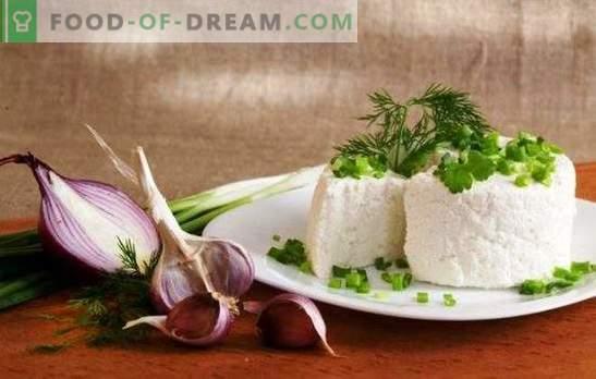 Kozji mleko je zdrav proizvod. Katere jedi lahko pripravite s kozjim sirom?